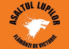 Steag oficial Asaltul Lupilor - Flamanzi de Victorie