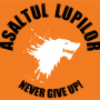 Steag oficial Asaltul Lupilor Never, GIVE UP! (orange)