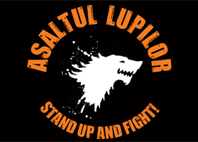 Steag oficial Asaltul Lupilor Stand Up and Fight (negru)