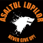 Steag oficial Asaltul Lupilor Never, GIVE UP! (negru)