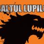 Steag oficial Asaltul Lupilor (orange)