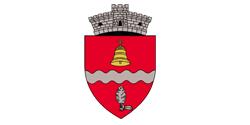 Primaria Ciurea